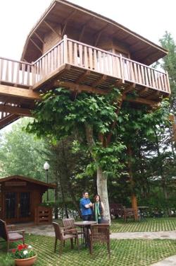 Casa en el árbol Jakue